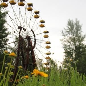 Chernobyl region, Ukraine
